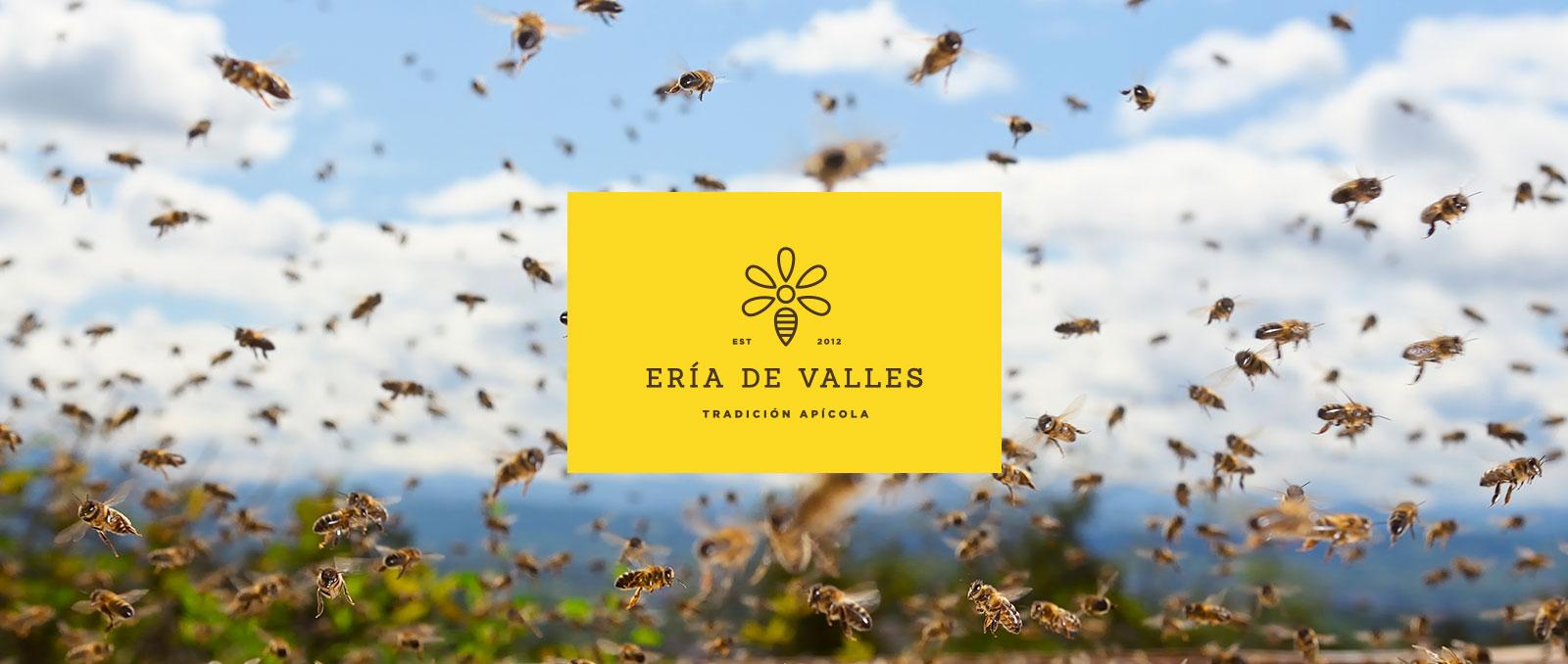 Tradición apícola Eria de Valles - Miel natural de Asturias
